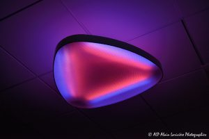 Psychedelic neon -2a-