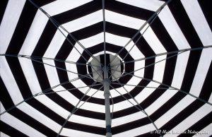 Le parasol noir et blanc