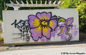 Tags à Châtel-Guyon : Tag fleur -1-