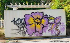 Tags à Châtel-Guyon : Tag fleur -2-