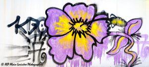 Tags à Châtel-Guyon : Tag fleur -3-