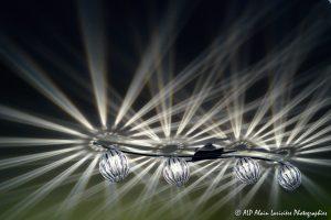 Faisceaux de lumière -6-