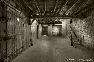 La vieille maison abandonnée, la grange -2sépia-