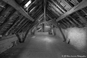 La vieille maison abandonnée, le grenier -4N&B-