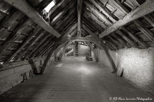 La vieille maison abandonnée, le grenier -4sépia-