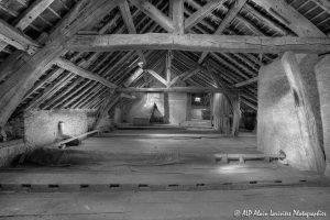 La vieille maison abandonnée, le grenier -10N&B-