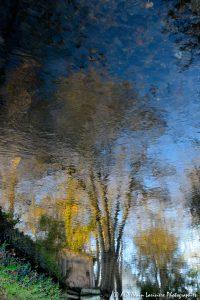 Reflet impressionniste -2-