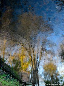Reflet impressionniste -2R-